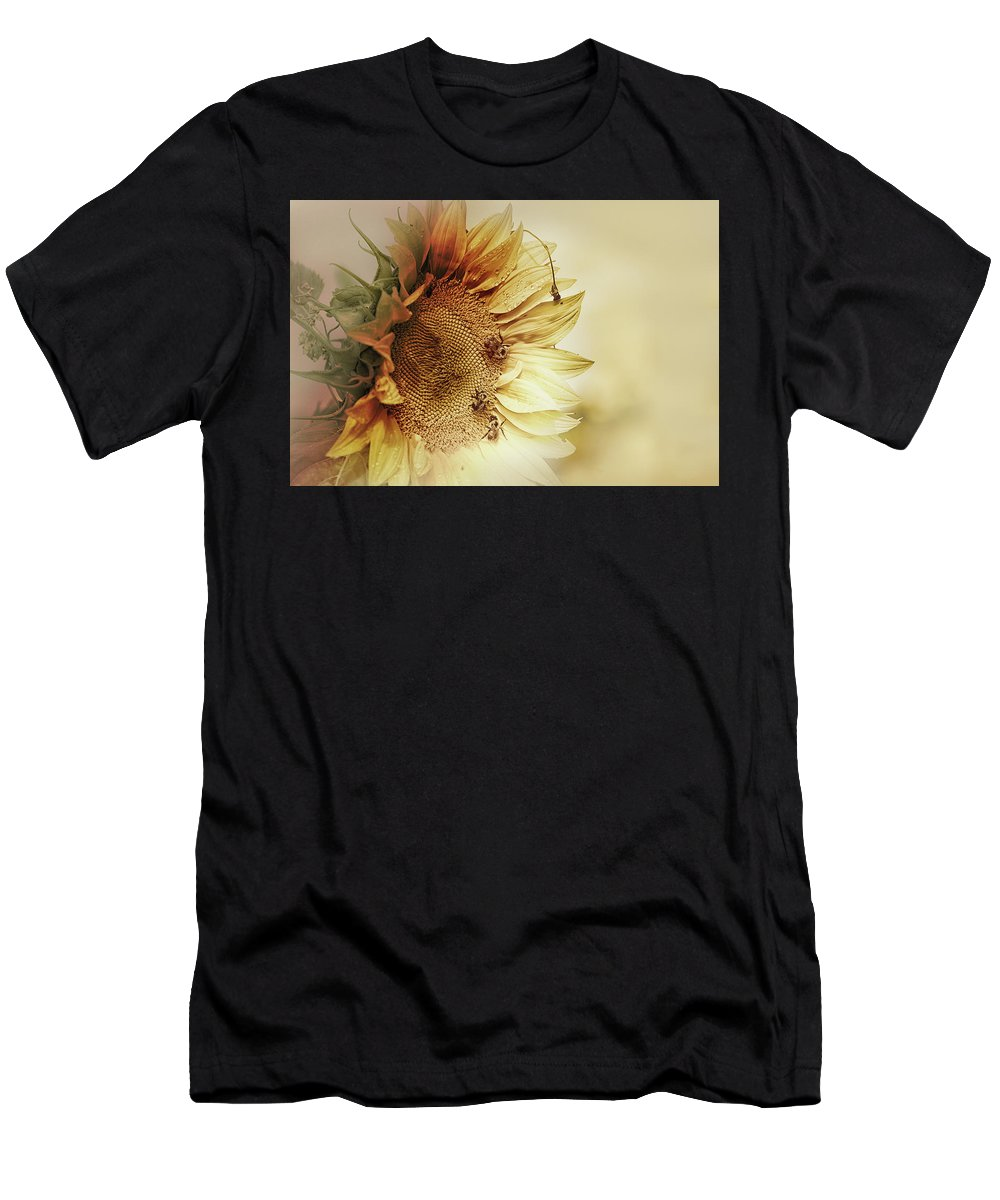 Sunflower Men's T-Shirt (Athletic Fit) featuring the photograph Sunflower Days by Susan Capuano