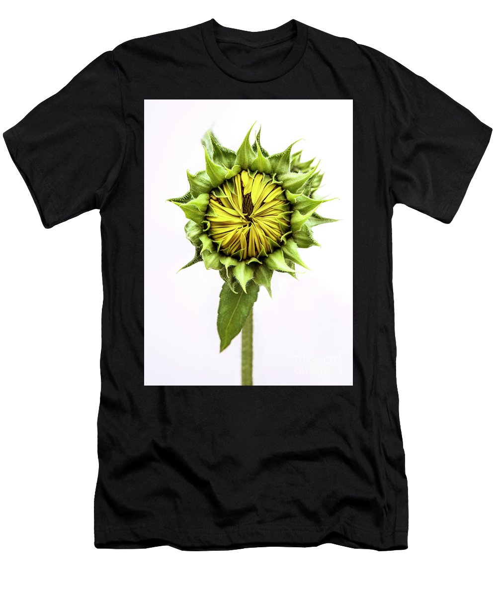 Sunflower Men's T-Shirt (Athletic Fit) featuring the photograph Sunflower by Diane Diederich