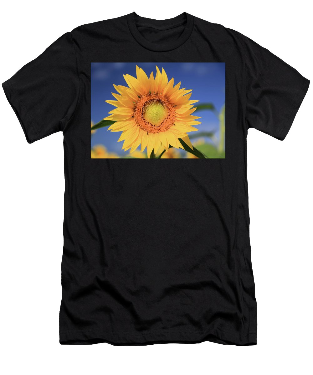 Photosbymch Men's T-Shirt (Athletic Fit) featuring the photograph Sunflower by M C Hood