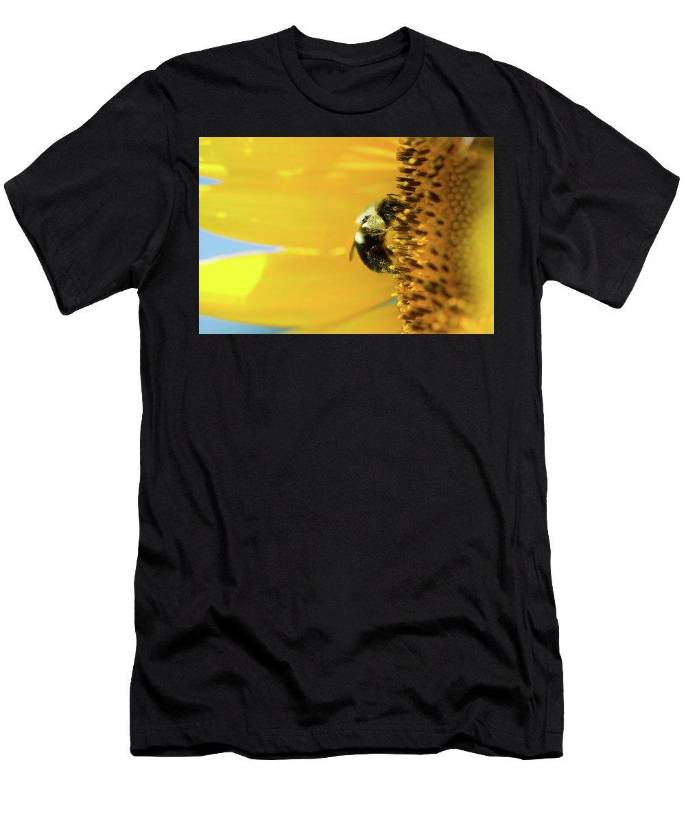 Macro Men's T-Shirt (Athletic Fit) featuring the photograph Sunflower Pollen by Jodi Lynne Belinski