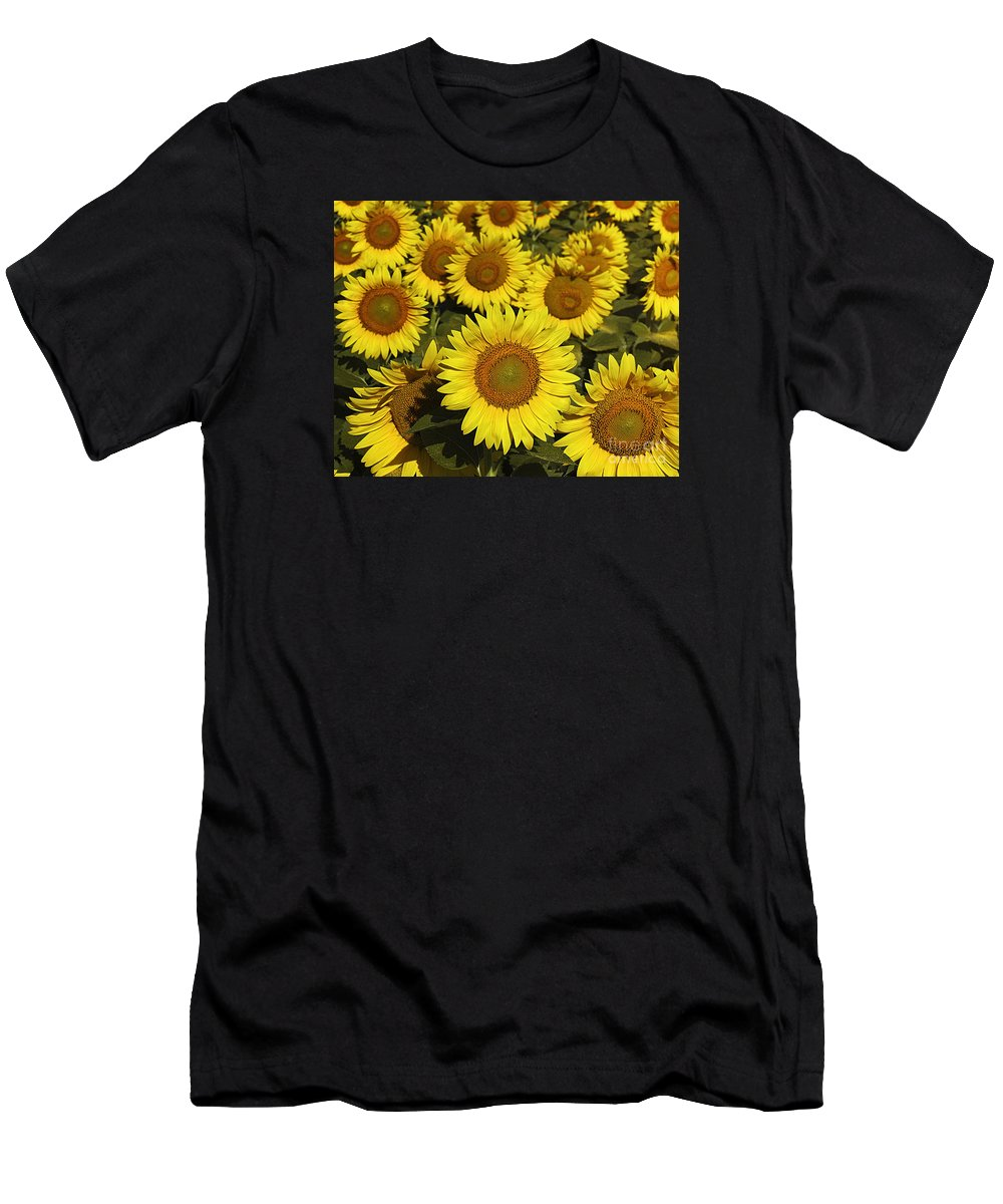 Flowers Men's T-Shirt (Athletic Fit) featuring the photograph Sunflower Sunshine by Timothy Flanigan