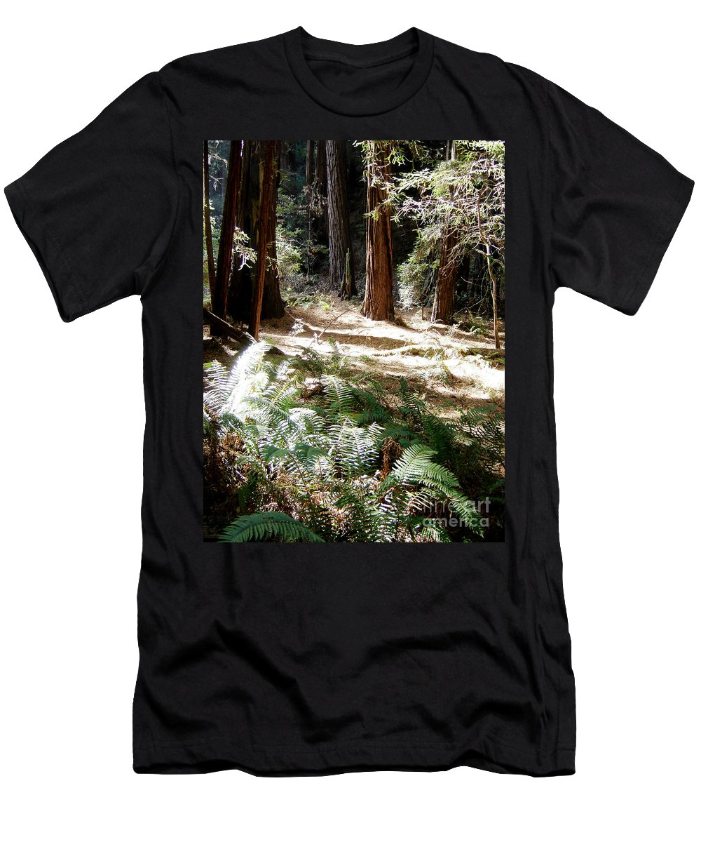 Sunlight Men's T-Shirt (Athletic Fit) featuring the photograph Sunlight On Path by Mary Rogers