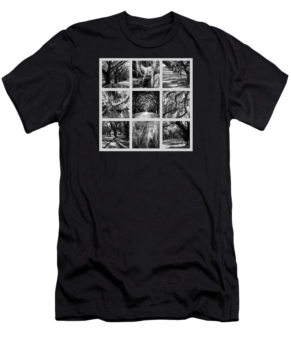 Live Oaks Men's T-Shirt (Athletic Fit) featuring the photograph Sunlight Through Live Oaks Collage by Carol Groenen