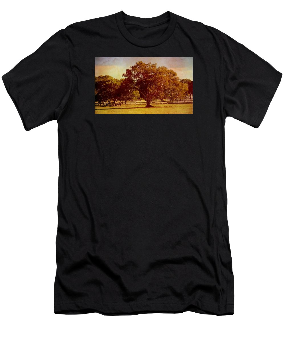 Trees Men's T-Shirt (Athletic Fit) featuring the photograph Sunlit Landscape by Georgiana Romanovna