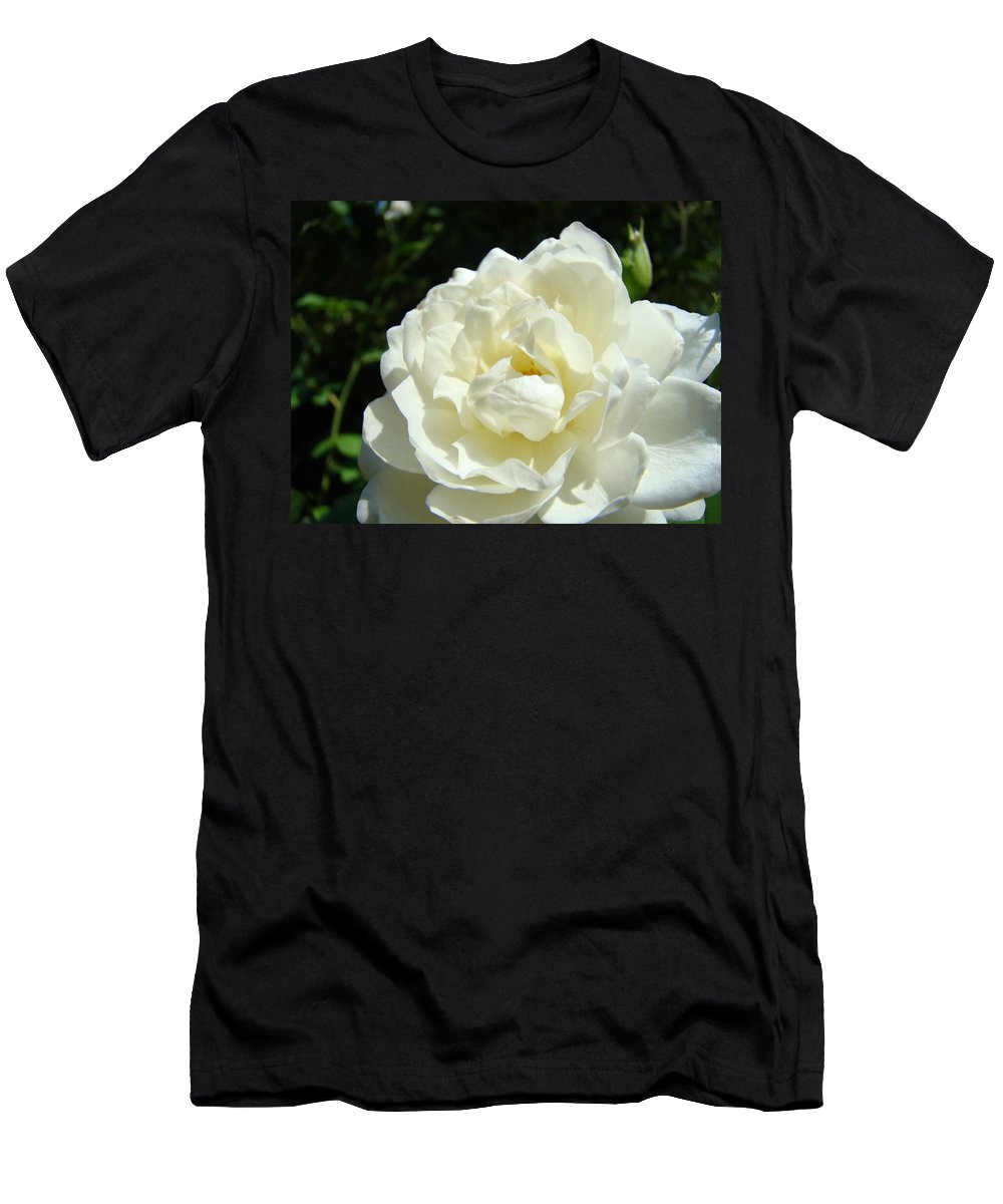 Rose Men's T-Shirt (Athletic Fit) featuring the photograph Sunlit White Rose Art Print Floral Giclle Print Baslee Troutman by Baslee Troutman