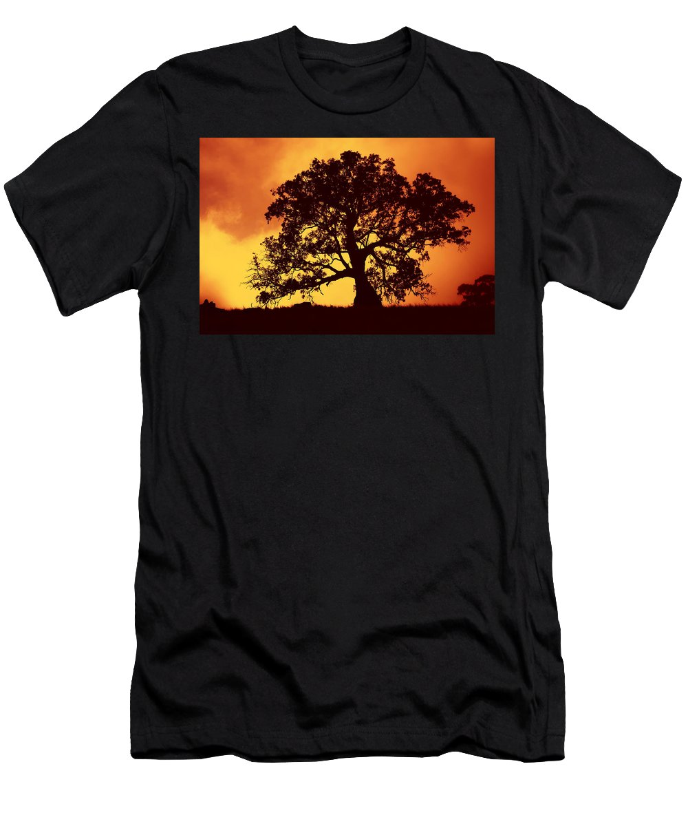 Gum Tree Men's T-Shirt (Athletic Fit) featuring the photograph Sunrise Gum by Mike Dawson