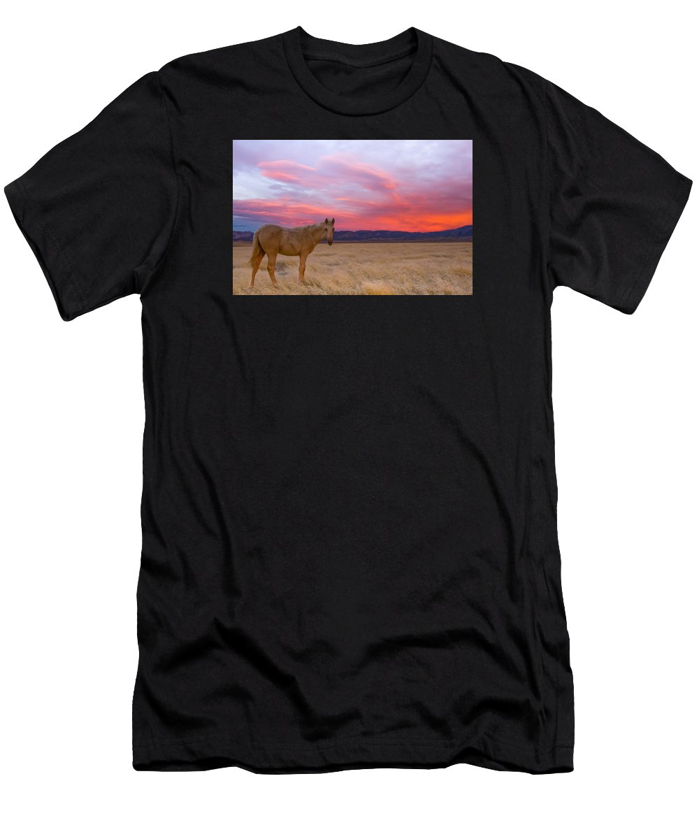 Wild Horse Men's T-Shirt (Athletic Fit) featuring the photograph Sunset Filly by Kent Keller