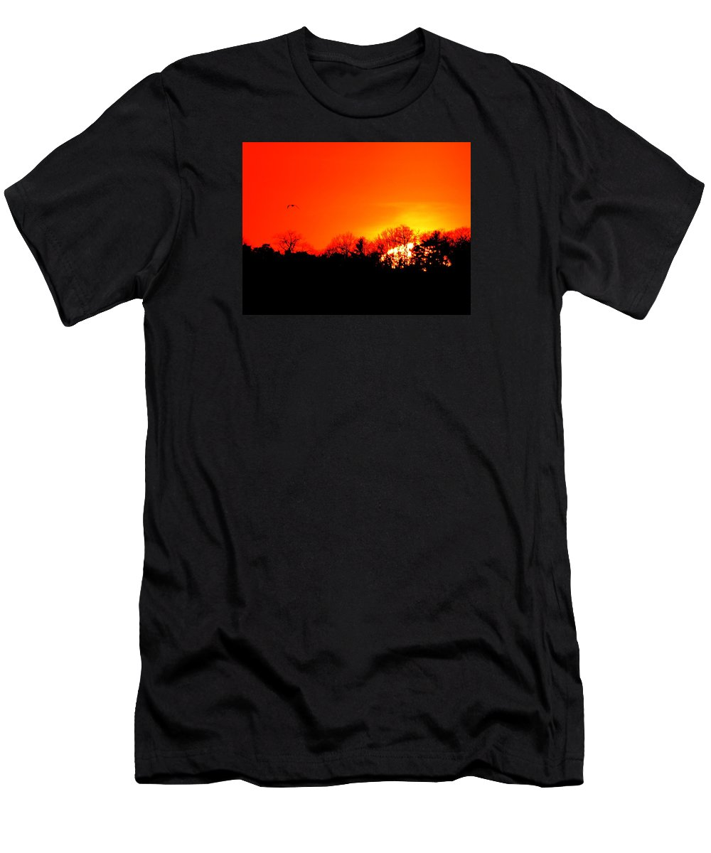 Abstract Men's T-Shirt (Athletic Fit) featuring the photograph Sunset Flying Three by Lyle Crump