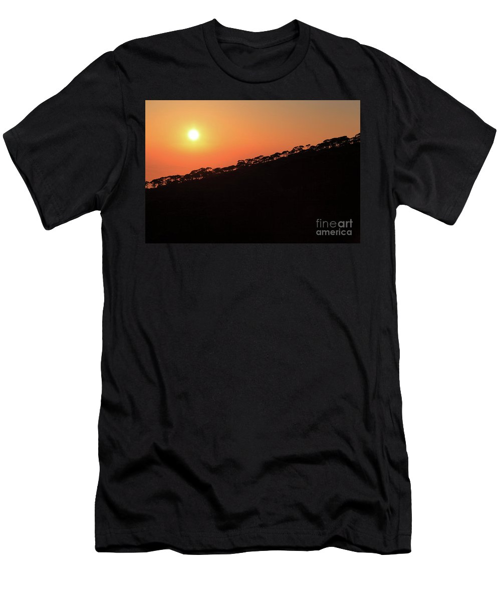 Sunset Men's T-Shirt (Athletic Fit) featuring the photograph Sunset Over Pine Forest by Dia Karanouh