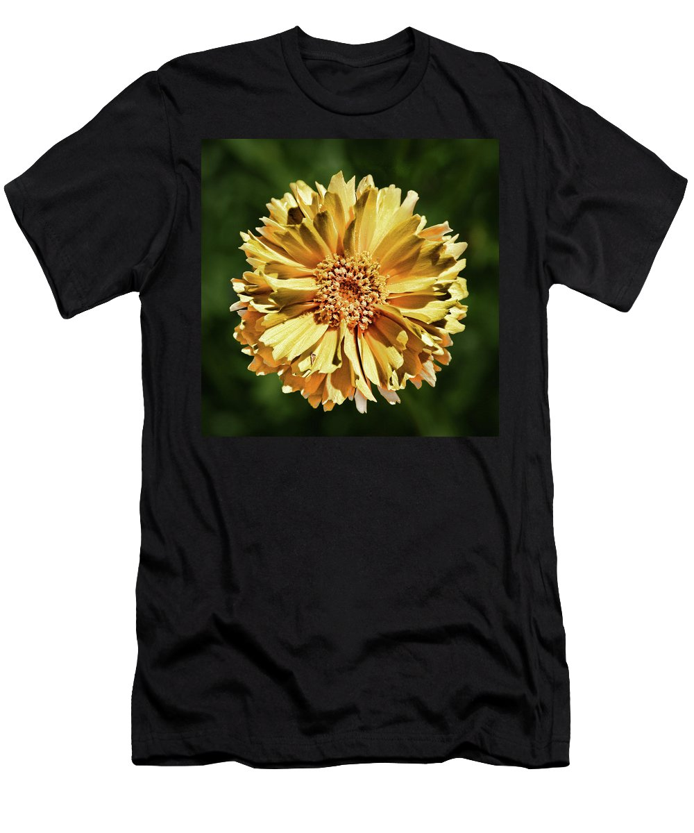 Yellow T-Shirt featuring the photograph Sunshine Flower by Marie Leslie