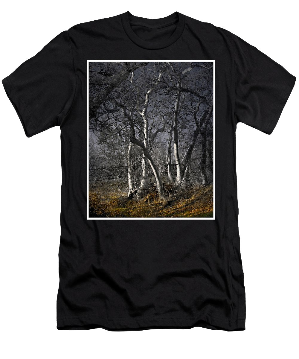 Landscape Men's T-Shirt (Athletic Fit) featuring the photograph Sycamore Grove by Karen W Meyer