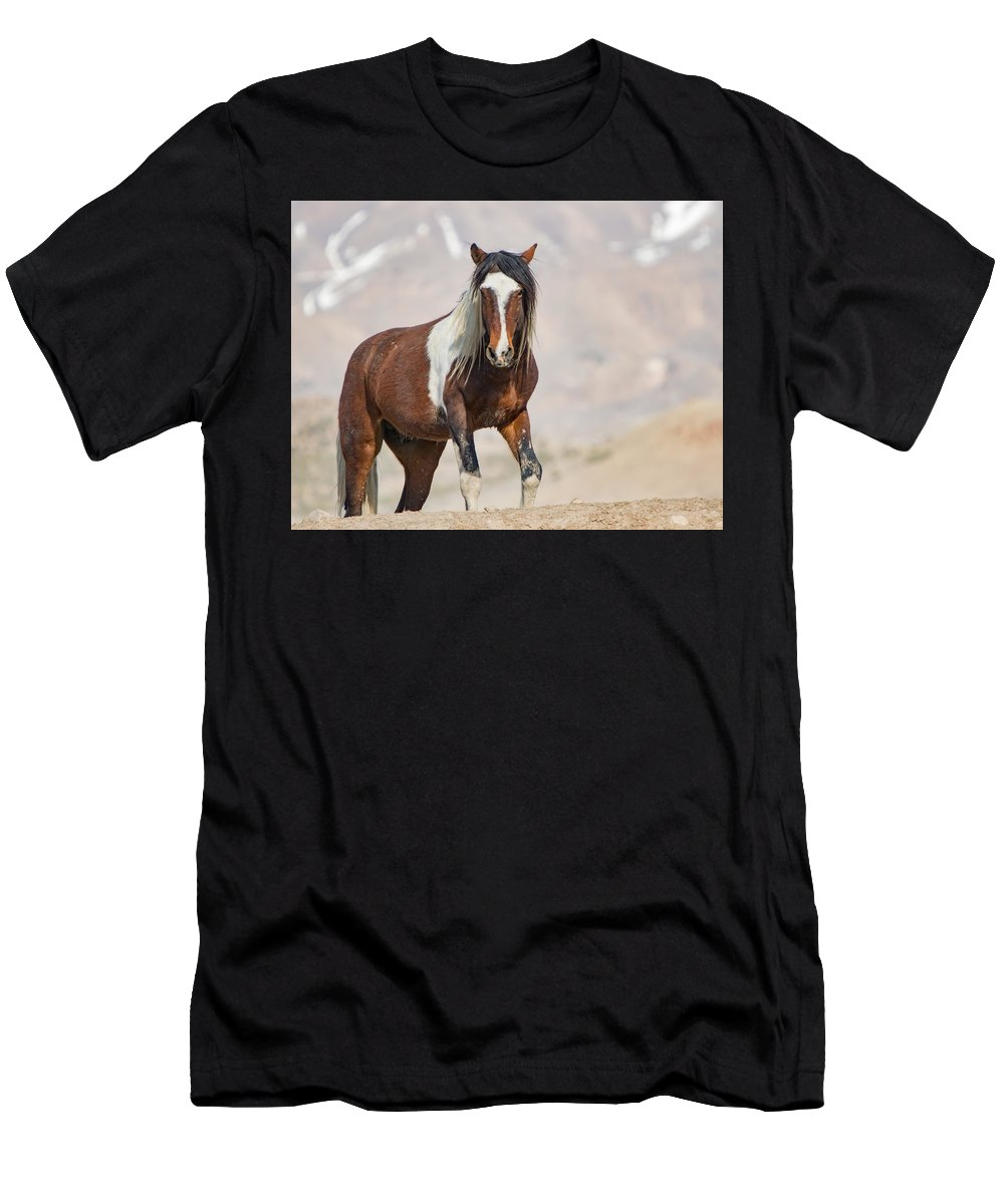 Horse Men's T-Shirt (Athletic Fit) featuring the photograph T Square by Kent Keller