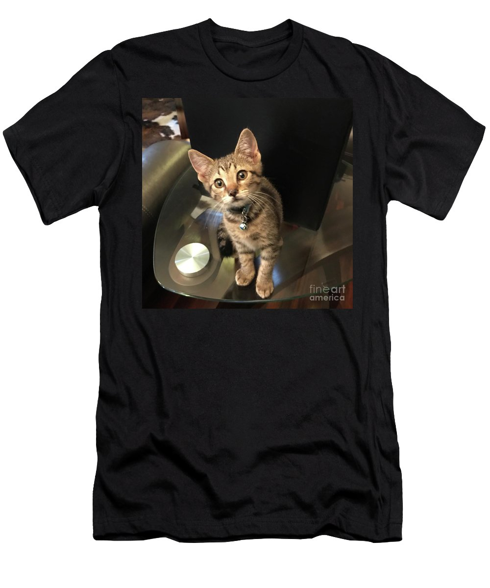Tabby Men's T-Shirt (Athletic Fit) featuring the photograph Tabletop Dom by John W Smith III