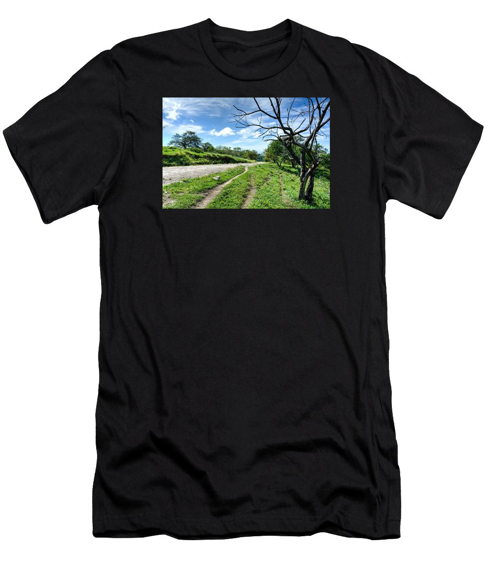 Farm Men's T-Shirt (Athletic Fit) featuring the photograph Take A Path by Joan Baker