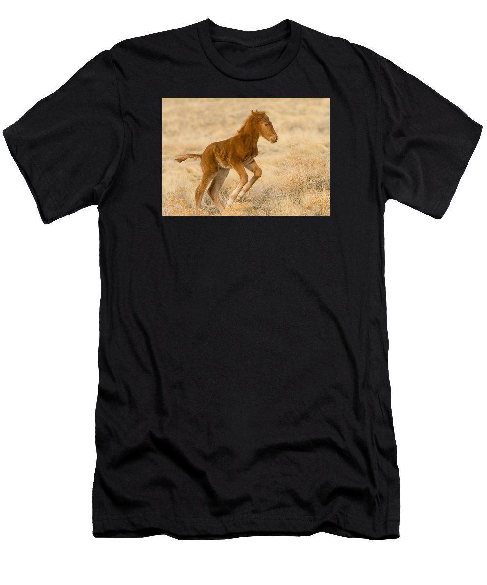 Wild Horse Men's T-Shirt (Athletic Fit) featuring the photograph Takeoff by Kent Keller
