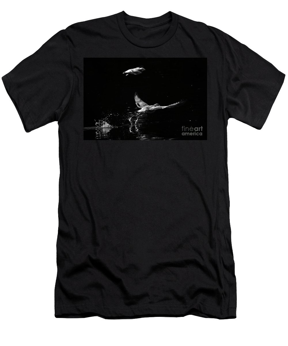 Seagull Men's T-Shirt (Athletic Fit) featuring the photograph Taking Off by Karol Livote