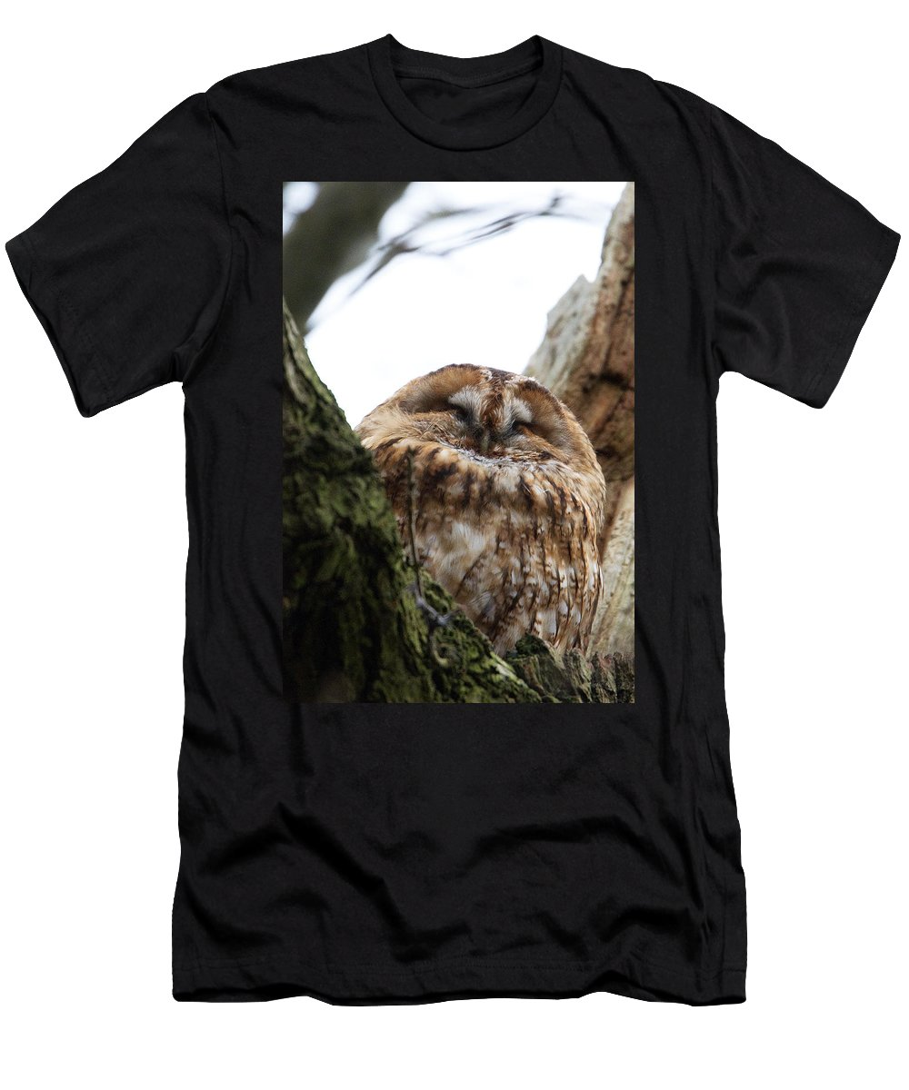 Tawny Owl Men's T-Shirt (Athletic Fit) featuring the photograph Tawny Owl by Bob Kemp