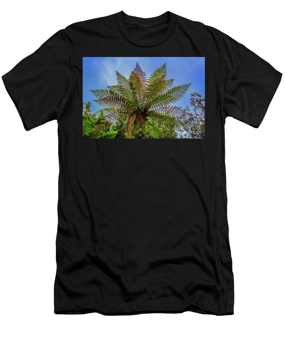 Te Whakarewarewa Men's T-Shirt (Athletic Fit) featuring the photograph Te Puia Palm Tree by Roberta Bragan