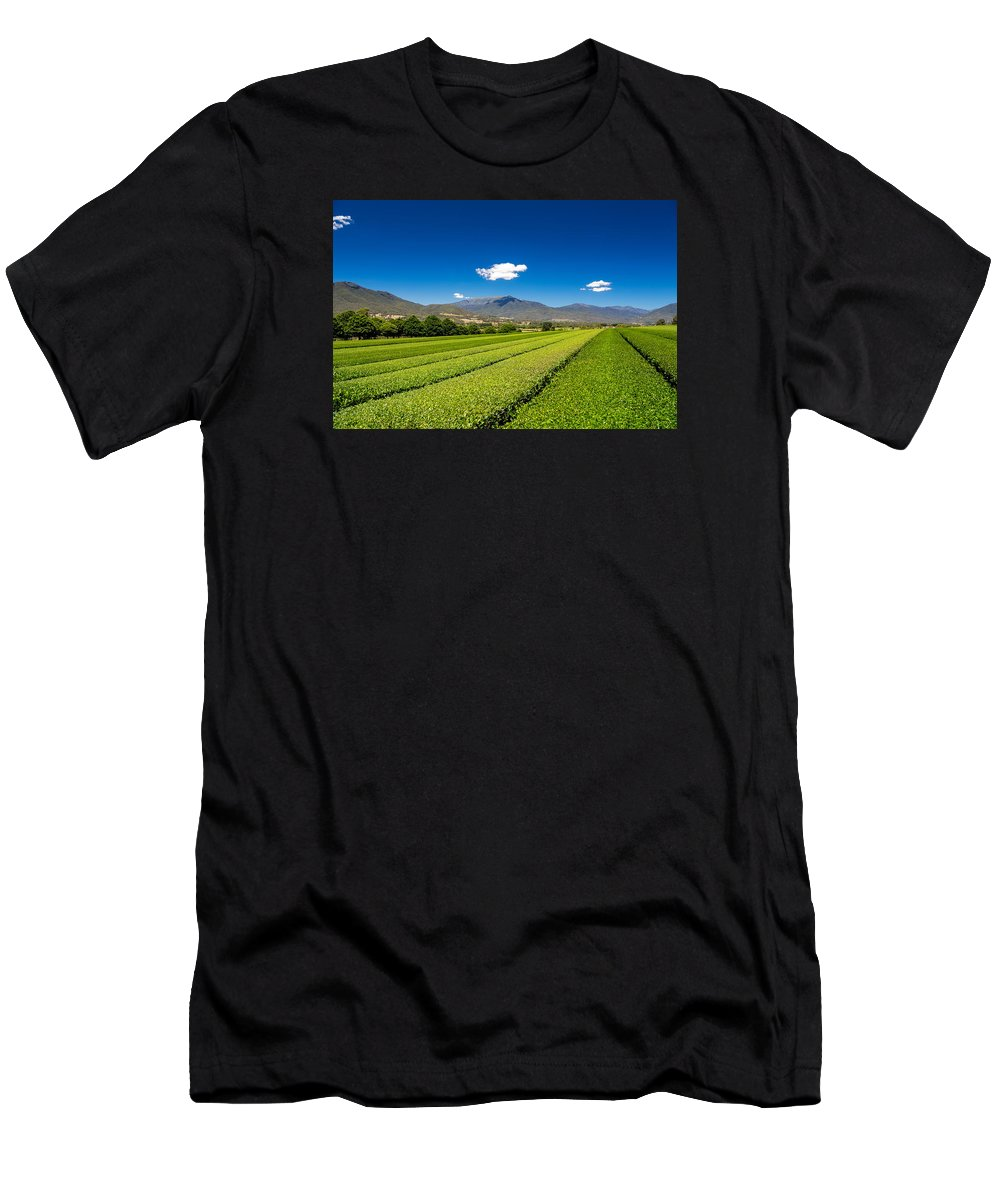 Alpine Green Tea Men's T-Shirt (Athletic Fit) featuring the photograph Tea In The Valley by Mark Lucey