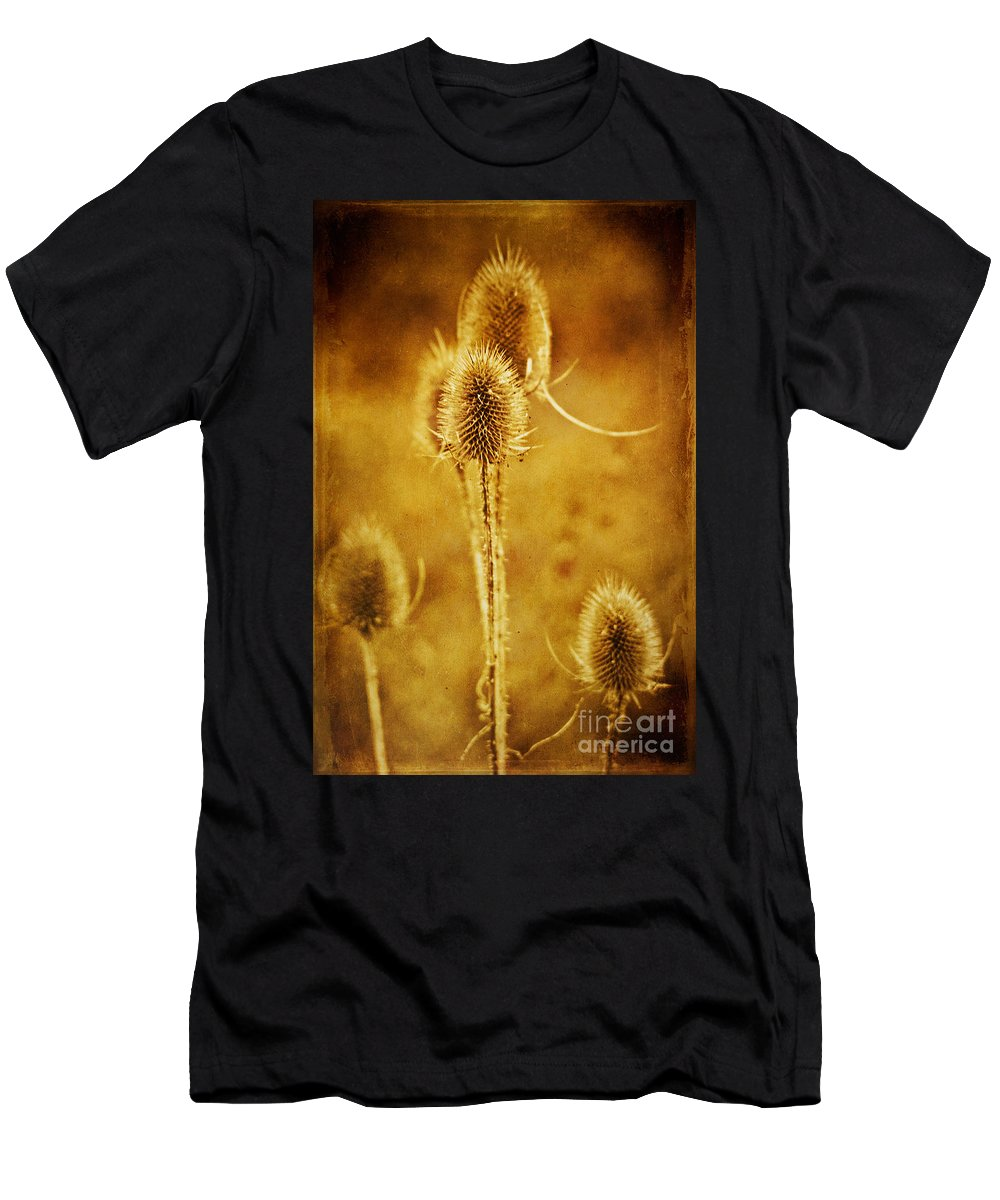 Teasel Men's T-Shirt (Athletic Fit) featuring the photograph Teasel Group by John Edwards