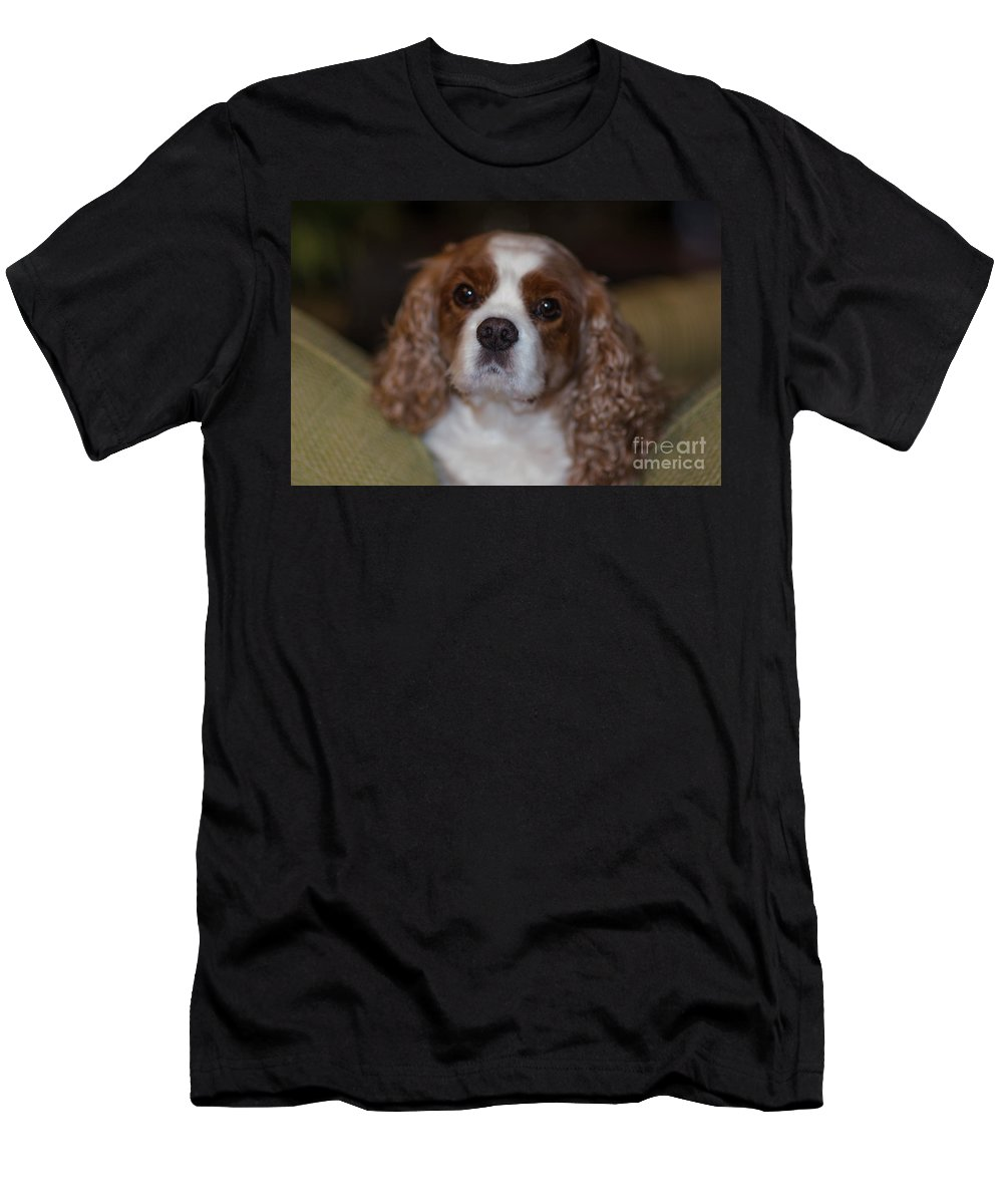 Rivers Men's T-Shirt (Athletic Fit) featuring the photograph That Special Bond by Dale Powell