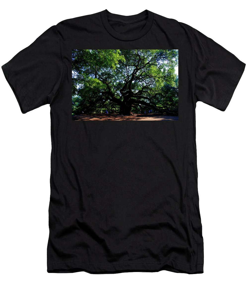 Angel Oak Men's T-Shirt (Athletic Fit) featuring the photograph The Angel Oak In Summer by Susanne Van Hulst