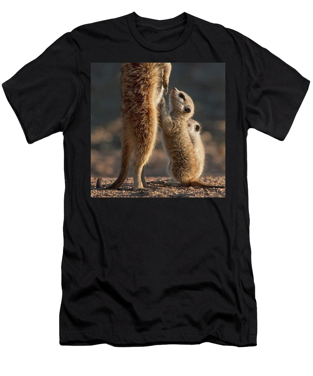 Meerkat Men's T-Shirt (Athletic Fit) featuring the photograph The Baby Is Hungry by Happy Home Artistry