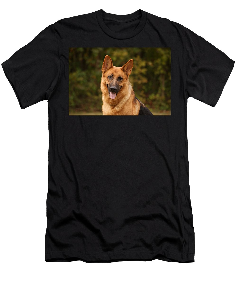 German Shepherd Dog Men's T-Shirt (Athletic Fit) featuring the photograph The Beautiful Kelly by Sandy Keeton