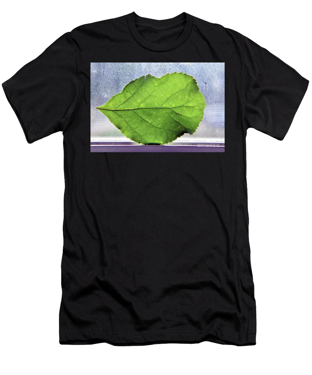 Leaf Men's T-Shirt (Athletic Fit) featuring the photograph The Beauty Of A Leaf by Sara Matthews