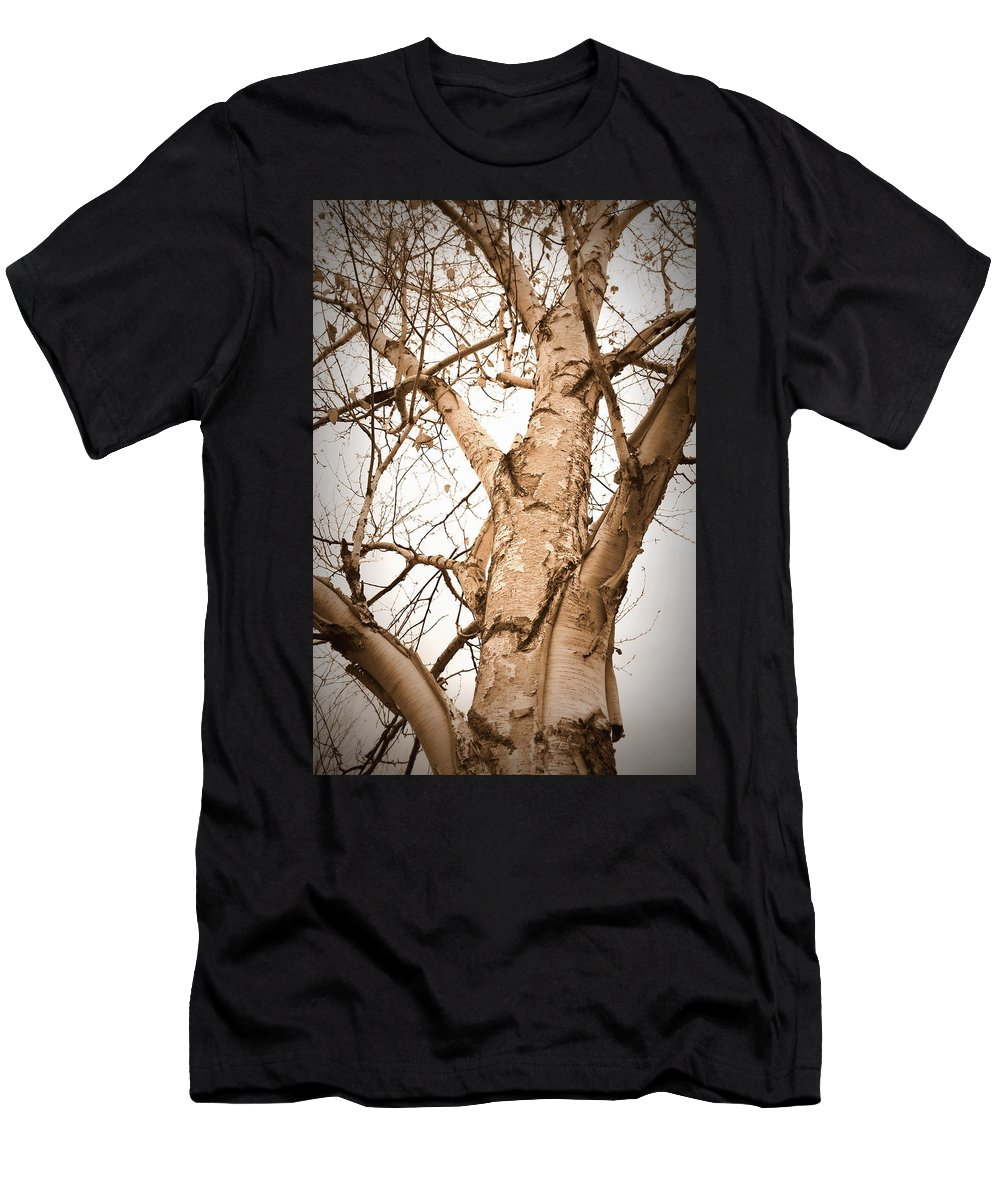 Sepia Men's T-Shirt (Athletic Fit) featuring the photograph The Birch by Mark Salamon