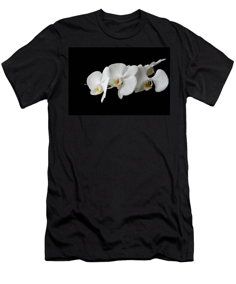 Closeup Men's T-Shirt (Athletic Fit) featuring the photograph The Branch Of White Orchid On Black Background by Aleksandr Rybin