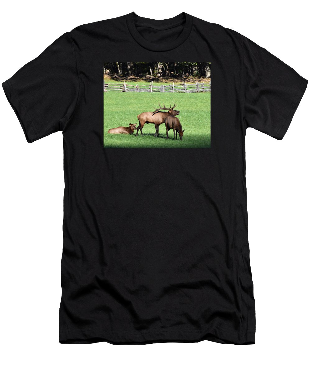 Ann Keisling Men's T-Shirt (Athletic Fit) featuring the photograph The Call by Ann Keisling