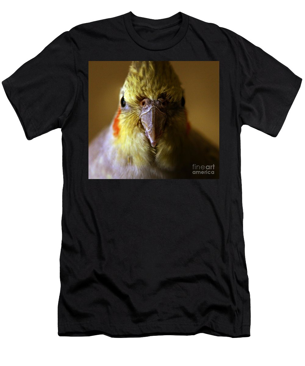 Cockatiel Men's T-Shirt (Athletic Fit) featuring the photograph The Cockatiel by Angel Tarantella