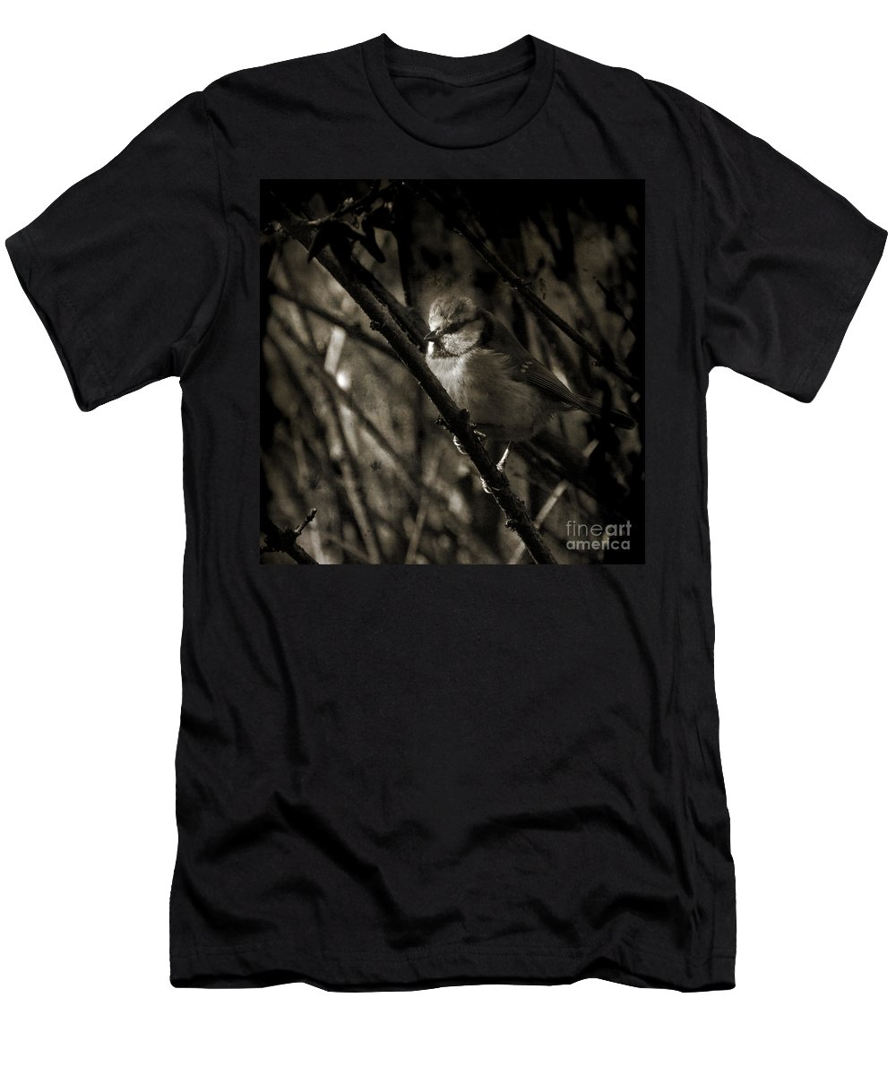 Blue Tit Men's T-Shirt (Athletic Fit) featuring the photograph The Cold Morning by Angel Ciesniarska