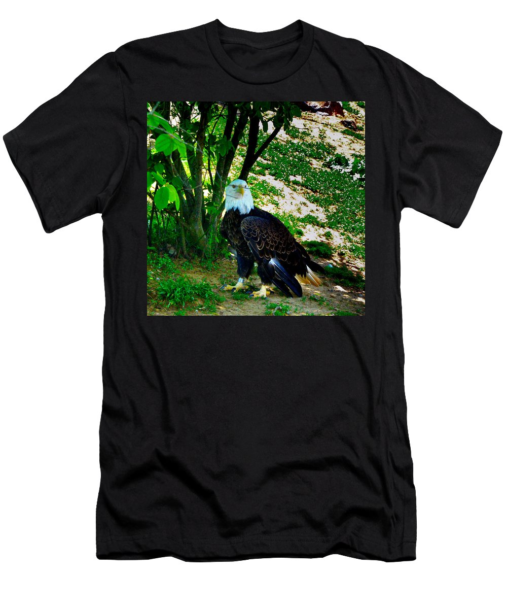 Eagle T-Shirt featuring the photograph The Eagle has Landed by Bill Cannon