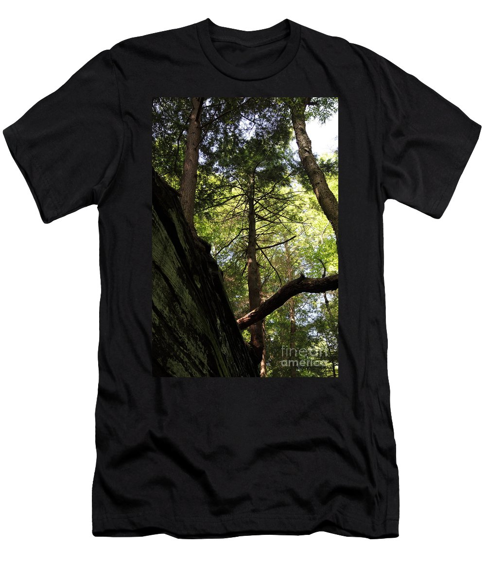 Tree Men's T-Shirt (Athletic Fit) featuring the photograph The Fallen Triangle by Amanda Barcon