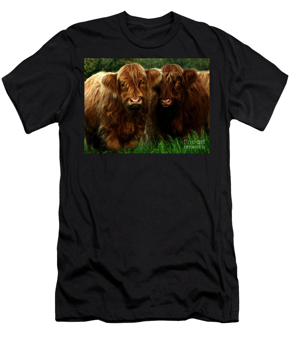 Heilan Coo Men's T-Shirt (Athletic Fit) featuring the photograph The Fluffy Cows by Angel Ciesniarska