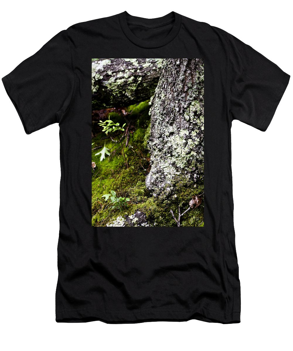 Moss Men's T-Shirt (Athletic Fit) featuring the photograph The Forest Floor Bluestone State Park West Virginia by Teresa Mucha