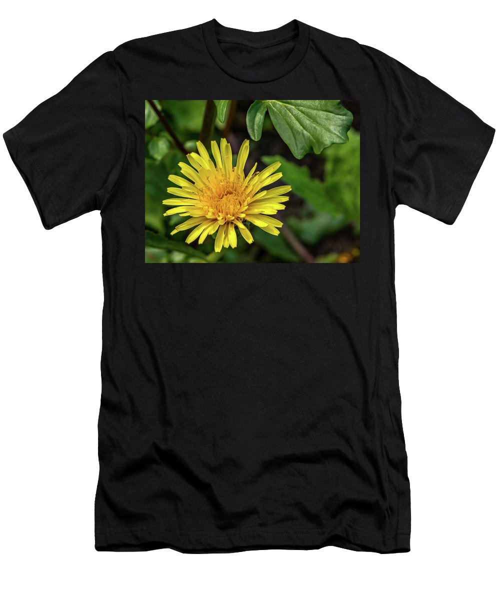 Flora Men's T-Shirt (Athletic Fit) featuring the photograph The Lawn King by Steve Harrington