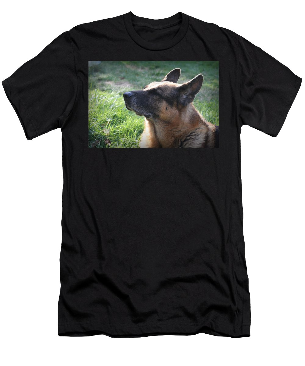 German Shepherd Men's T-Shirt (Athletic Fit) featuring the photograph The Love Of An Old Dog by Sue Long