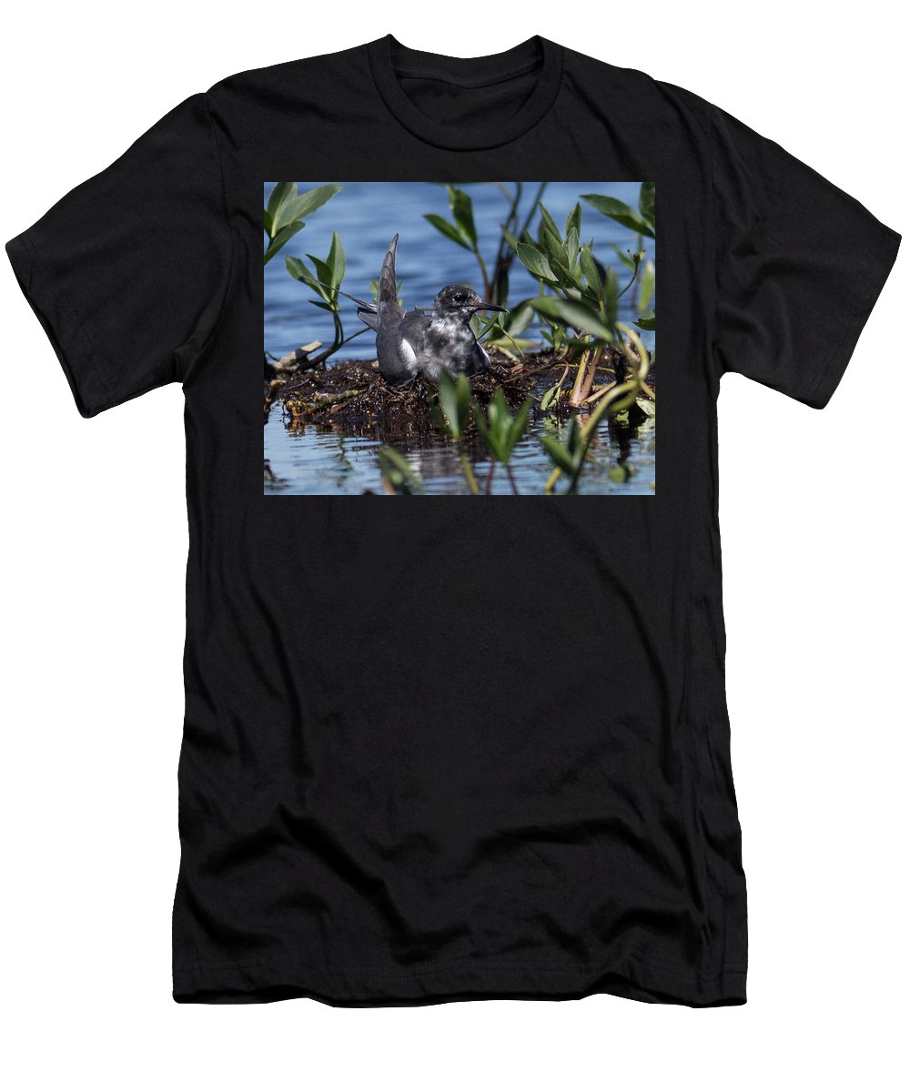 Black Tern Men's T-Shirt (Athletic Fit) featuring the photograph The Nest by Rhonda Robinson