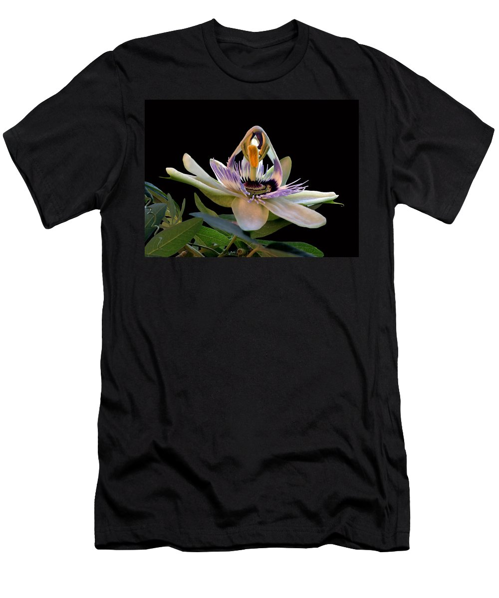 Flor De La Passion Men's T-Shirt (Athletic Fit) featuring the photograph The Opening Of A Passion by Madalena Lobao-Tello