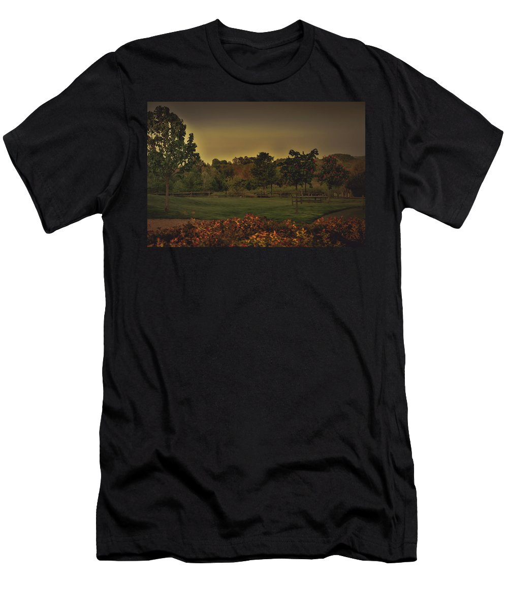 Tree Men's T-Shirt (Athletic Fit) featuring the photograph The Park At Dark by Howard Roberts
