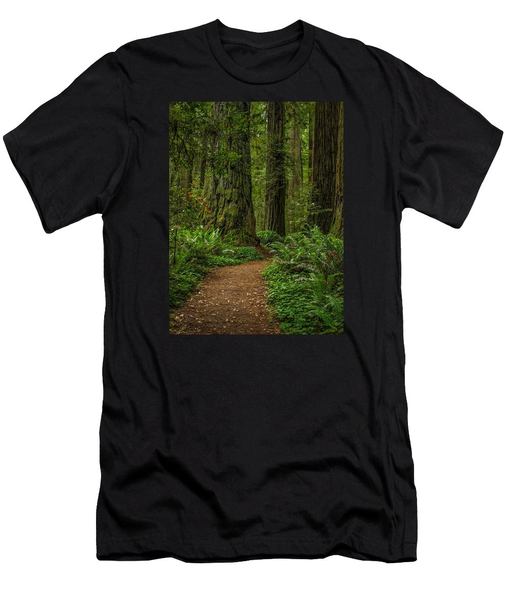 Jedediah Men's T-Shirt (Athletic Fit) featuring the photograph The Path Less Taken by Michele James