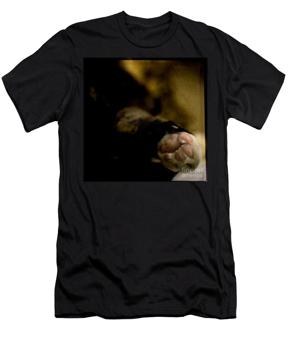 Cat Men's T-Shirt (Athletic Fit) featuring the photograph The Paw by Angel Tarantella