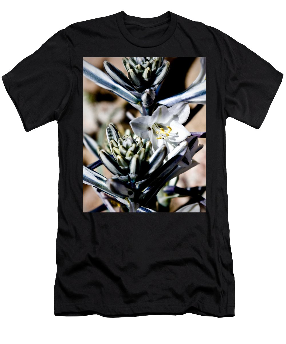 Desert Lily Men's T-Shirt (Athletic Fit) featuring the photograph The Shy Desert Lily by Chris Brannen