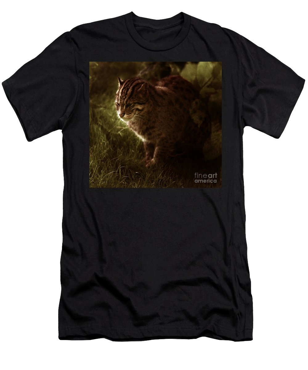 Sleepy Men's T-Shirt (Athletic Fit) featuring the photograph The Sleepy Wild Cat by Angel Ciesniarska