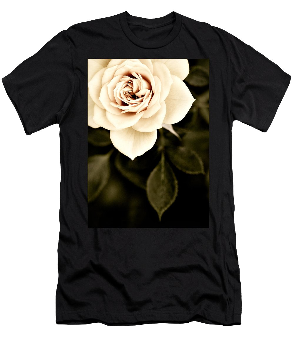 Rose Men's T-Shirt (Athletic Fit) featuring the photograph The Softest Rose by Marilyn Hunt