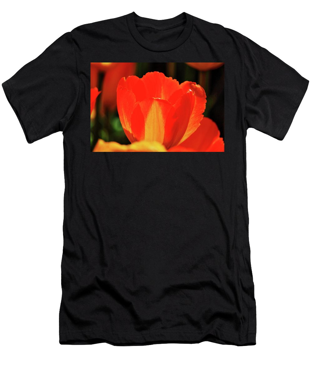 Red Men's T-Shirt (Athletic Fit) featuring the photograph The Stand Out by Daniel Koglin