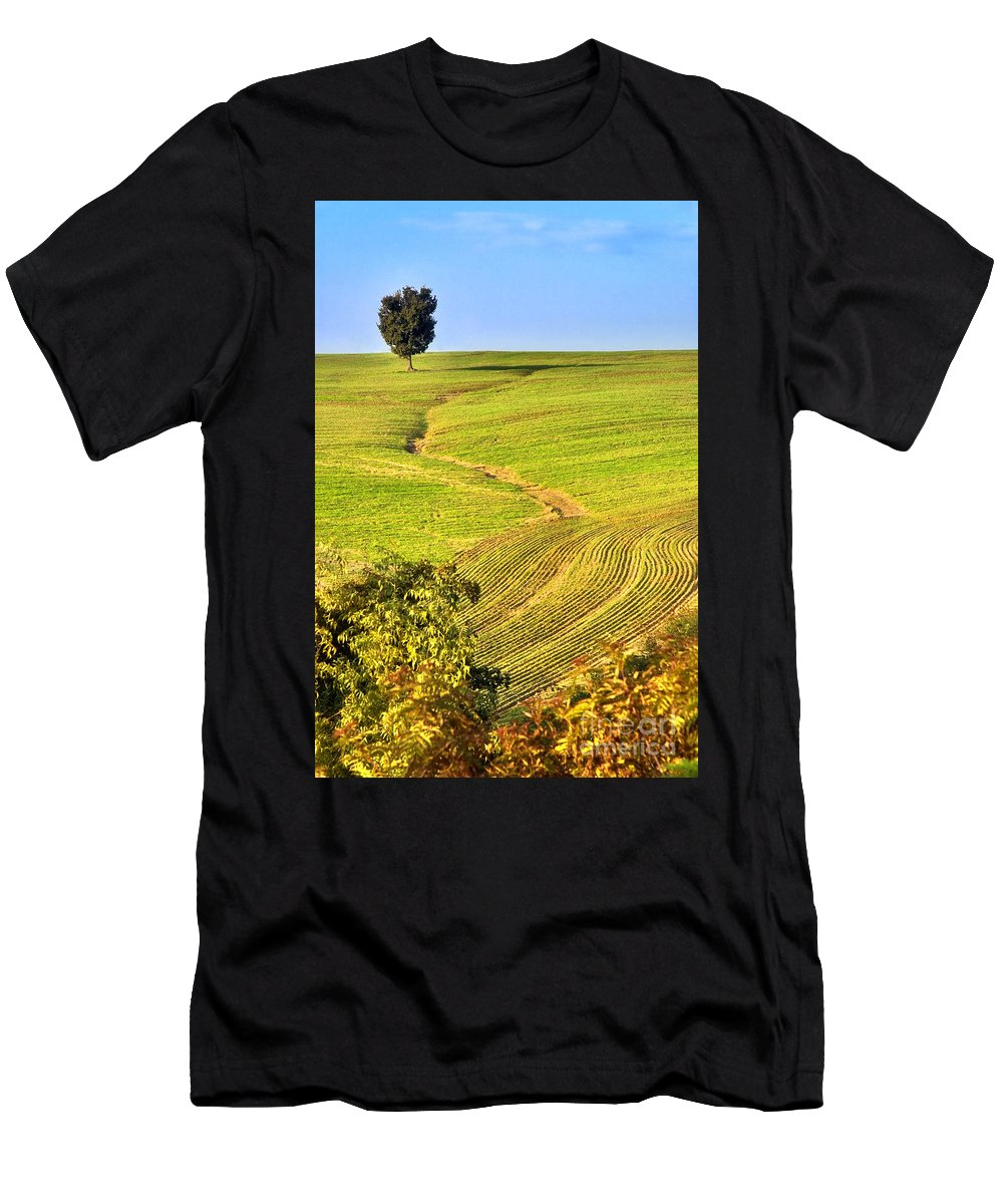 Tree Men's T-Shirt (Athletic Fit) featuring the photograph The Tree And The Furrows by Silvia Ganora